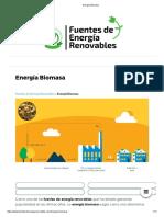 4.1 Energía Biomasa