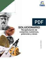Solucionario Gua Anual Recapitulacin de conjuntos numricos  potencias y races  2011