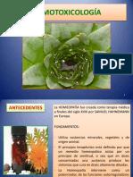 medicinaalternativa-120821194037-phpapp01