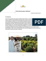 tribal-writeup-sandesh-feb2011-pdf
