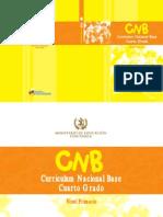 4to grado CNB