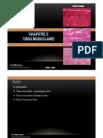 Chapitre 5 Tissu musculaire Dr Lamda 2021