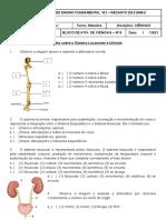 Bloco VIII - sistema locomotor e urinario