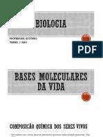 BIOLOGIA 1 Ano Bases Moleculares Prof Socorro