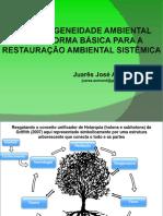 PPGEA 2015 PARTE 6  A HETEROGENEIDADE AMBIENTAL COMO FORMA BÁSICA PARA A RESTAURAÇÃO AMBIENTAL SISTÊMICA