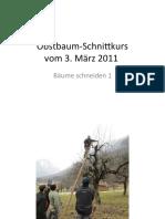 ObstbaumSchnittkursBaum1