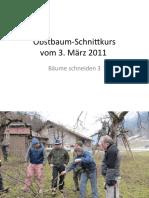 ObstbaumSchnittkursBaum3