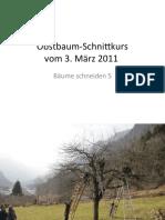 ObstbaumSchnittkursBaum5