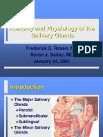 Salivary-gland-2001-01-ppt