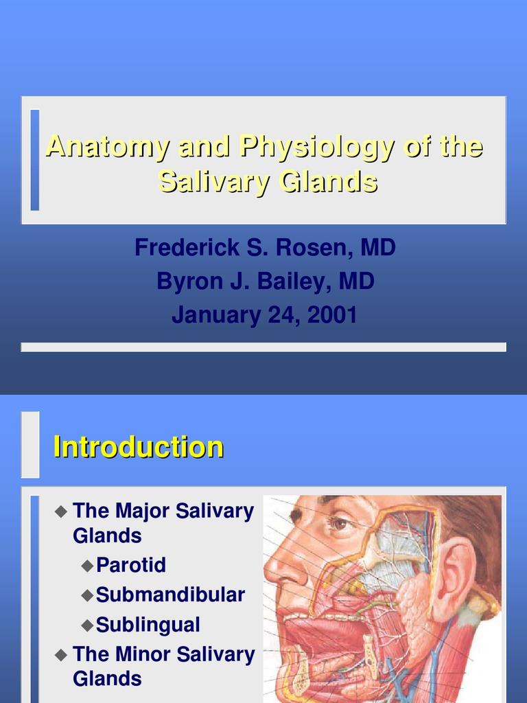 Salivary-gland-2001-01-ppt | Saliva | Glands