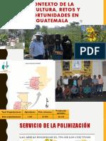SESION1 Contexto de La Apicultura_Diplomado Virtual Apícola