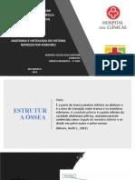 ANATOMIA E FISIOLOGIA DO SISTEMA REPRODUTOR FEMININO
