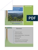 Sector forestal ecuatoriano