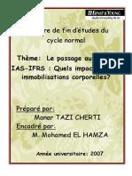 AmineLe Passage Aux Normes IAS-IfRS Quels Impacts Sur Les Immobilisations Corporelles