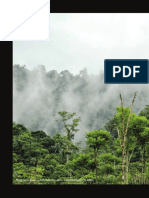 1 Hacia una Amazonia sostenible_ideas para una política pública