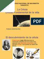 quinta_clase_la_CELULA_2