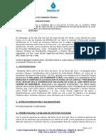 Informe de Comision Tecnica_Desierto