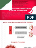 CUIDADOS PALIATIVOS EN ENFERMEDAD INTESTINAL INFLAMATORIA