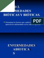 unidad-2-enfermedades-abibticas (1)