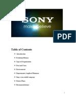 SONY Project Final
