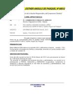 Informe Nº 001 - Informe de Gestión 2013