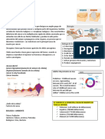 Kinesiologia Oncologica CLASE 1