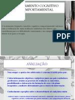 Psicoterapia Breve Cognitivo-Comportamental de Adolescentes - apresentação ppt 2