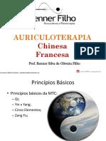 Ebook+Auriculoterapia
