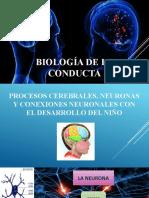 BIOLOGÍA DE LA CONDUCTA