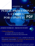 perfil_curriculo_por_competencias