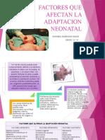 266480150-Factores-Que-Afectan-La-Adaptacion-Neonatal