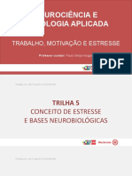 T5 - slides - trabalho motivação e stress