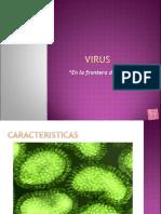 TEMA 6virus