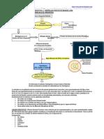 Hiperplasia Prostática Benigna (HPB)