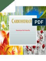 1. Carbohidratos.pdf Semestrales