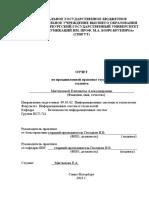 Отчет пдп Мягчилова