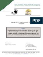 2ie_assainissement_pluvial_utilitaire_de_la_ville_de_dori_betsigui_2007