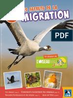 contenus-associes-les-secrets-de-la-migration-N-23241-41442