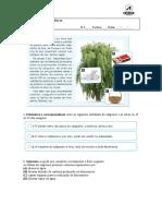 aencsi6_fc_plantas