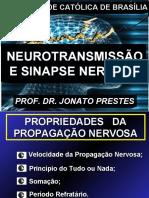 Aula 4 - Sinapse e neurotransmissão