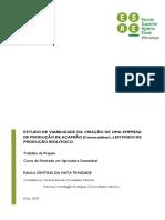 Projeto-Estudo_Viabilidade_Produção_Açafrão_Paula