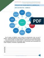 resumo_1293615-bruno-eduardo_13576455-gestao-de-projetos-novo-aula-05-areas-de-concentracao-de-conhecimentos-gerencia
