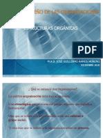 Estructuras_Organicas