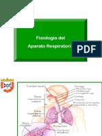Sistema _respiratorio (2)