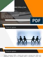 Governança de Organizações