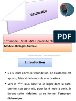 Cours 6 Gastrulation.pdf