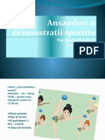 PREZENTARE PP - Ansamluri Si Demonstratii Sportive
