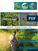 FEDERATION PECHE 67 Developpement Durable Des Hydrosystemes 2019