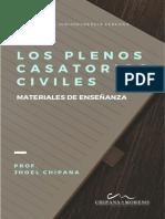 Vol. 6 Los Diez Plenos Casatorios Civiles