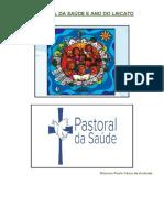 Pastoral Da Saúde e Ano Do Laicato
